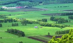 農業土木コンサル